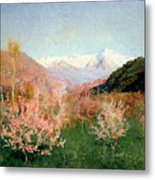 Spring In Italy Metal Print