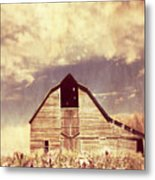 Spring In Kansas  Metal Print
