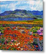 Spring In Namaqualand Metal Print