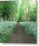 Spring In The Avenue Metal Print