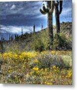 Spring In The Desert  Metal Print