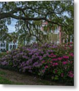 Spring In White Point Gardens Metal Print
