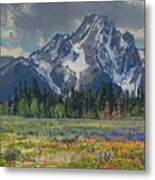 Spring In Wyoming Metal Print
