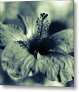 Spring Is Coming - Monochrome Metal Print