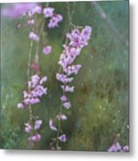Spring Is Weeping Metal Print