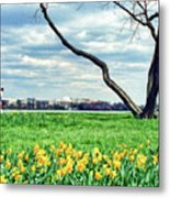 Spring Jog On The Potomac Metal Print