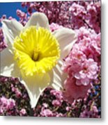 Spring Landscape Pink Tree Blossoms Yellow Daffodils Baslee Troutman Metal Print