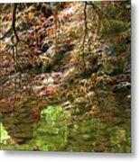 Spring Maple Leaves Over Japanese Garden Pond Metal Print