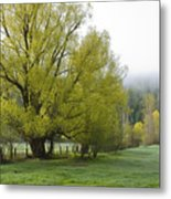Spring Meadow Metal Print