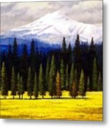 Spring Meadow Mount Brokeoff Metal Print