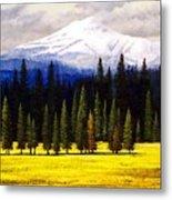 Spring Meadow Mount Brokeoff Metal Print