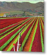 Spring Mix Lettuce Fields Metal Print