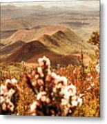 Spring Mountain Blossoms Metal Print