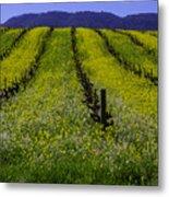 Spring Mustard Field Metal Print