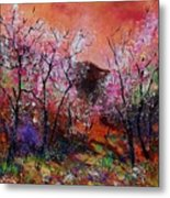 Spring Near My Home Metal Print