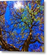 Spring Oak Metal Print