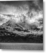Spring On Glacier Bay Metal Print