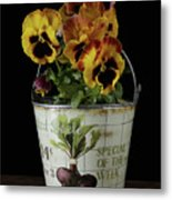 Spring Pansy Flowers In A Pail Metal Print