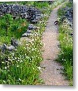 Spring Path/loving Metal Print
