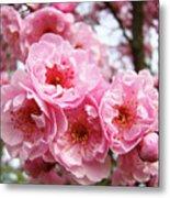 Spring Pink Tree Blossoms Art Prints Baslee Troutman Metal Print