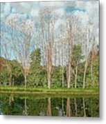 Spring Pond Reflection Metal Print