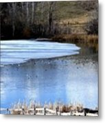 Spring Pond Metal Print