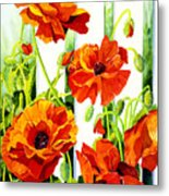 Spring Poppies Metal Print by Janis Grau