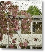 Spring Rain Outside The Window And Sakura Metal Print