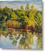 Spring Reflection Metal Print