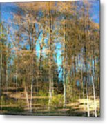 Spring Reflection Metal Print