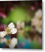 Spring Reflections-3 Metal Print