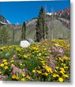 Spring Rocky Mountain Landscape Metal Print