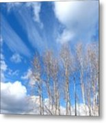 Spring Sky And Cotton Trees Metal Print