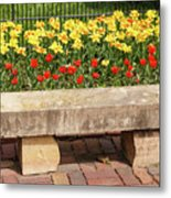 Spring Surrounds The Bench Metal Print