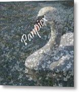 Spring Swan Metal Print