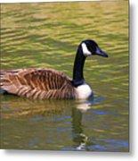 Spring Time Goose Metal Print