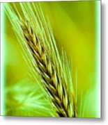 Spring Time Green Metal Print