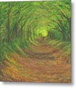 Spring Tree Tunnel Metal Print