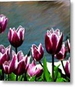 Spring Tulips 1 Metal Print