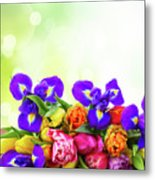 Spring Tulips And Irises Metal Print