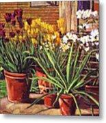 Spring Tulips And White Azaleas Metal Print