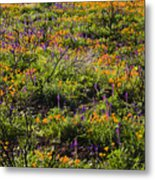 Spring Wildflowers Metal Print