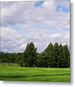 Spring Windy Day On Green Field Metal Print