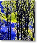 Spring Woodland  Metal Print