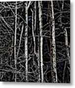 Spring Woods Simulated Woodcut Metal Print