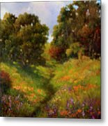 Springers Pond Lake County Metal Print