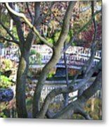 Springtime Bridge Through Japanese Maple Tree Metal Print by Carol Groenen