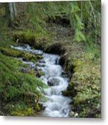 Springtime Creek Metal Print