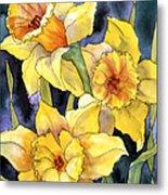 Springtime Daffodils Metal Print