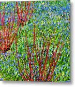 Springtime Impression Metal Print